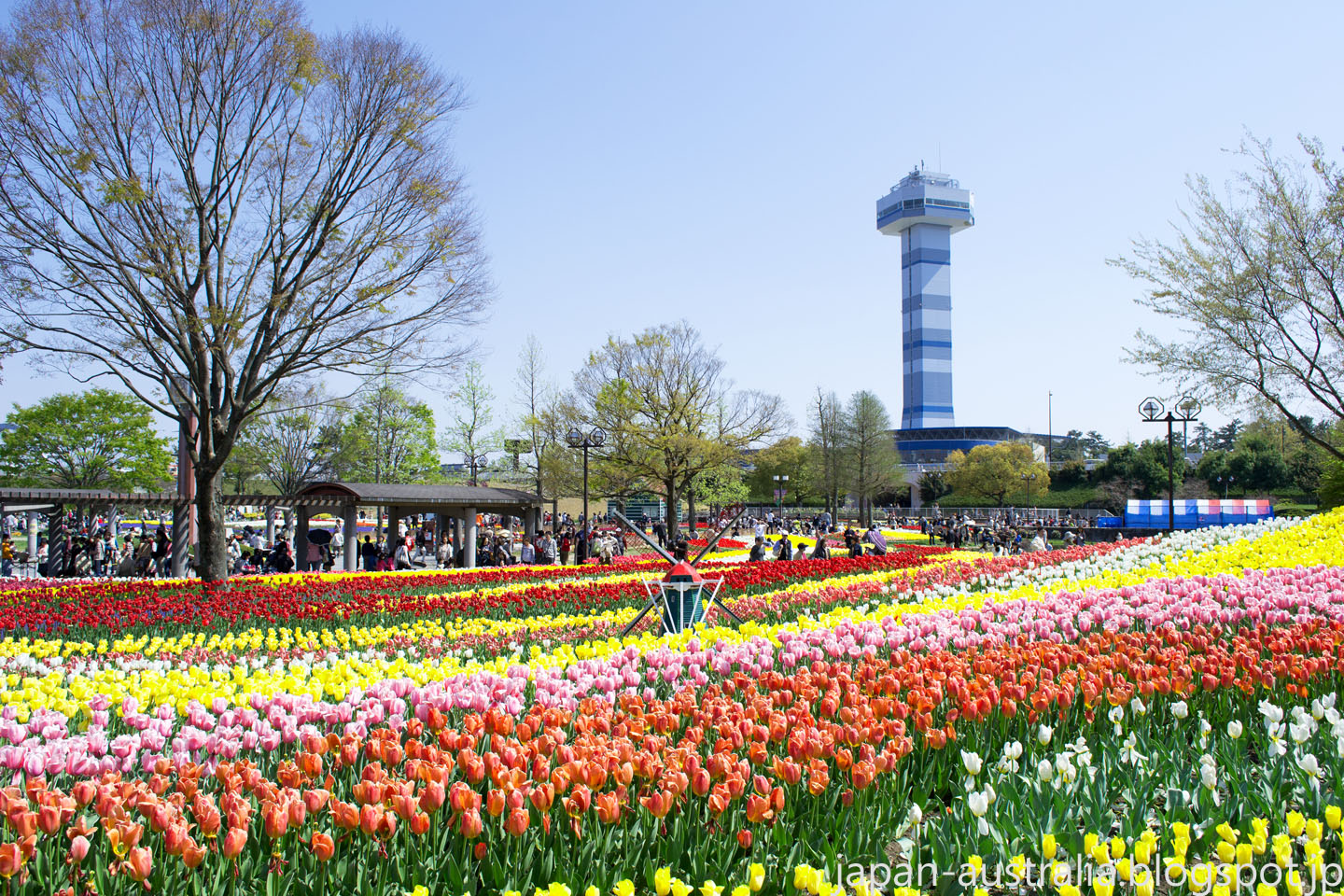Three Of The Best Flower Parks In Japan Super Cheap Japan